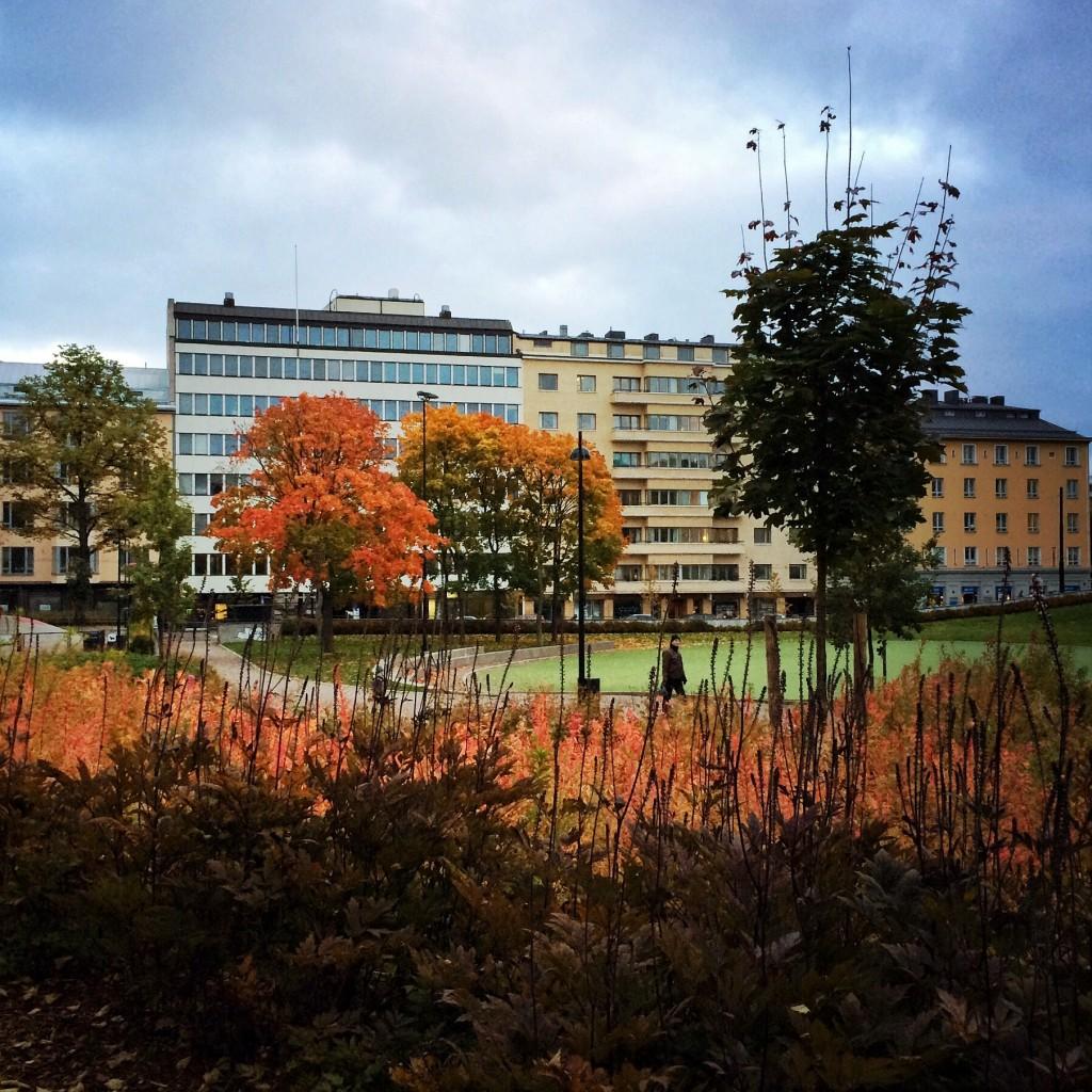 Parc (Lastenlehdon puisto) dans le quartier de Kamppi à Helsinki © Photographie Damien Alcantara